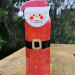 Santa Claus Sensory Bottle- a great craft that helps kids calm down